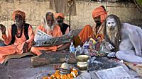naga baba daram puri with sadhus in encampment on the ghats of benares, offering blessing and good karma to hindu pilgrims, a few days before the shiv...