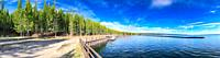 Yellowstone lake and forest on a beautiful sunny morning. Panoramic view.