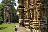 Detail of the Chitrakarini Temple in Bhubaneshwar, Odisha, India.