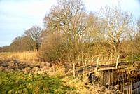 small wooden bridge over Reest brook in Salland, Overijssel, Holland