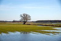 country side at Reest valley in spring in Overijssel, Holland