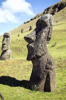Stone sculptures, Moai, at the stone quarry on the slope to the crater Rano Raraku which is an extinct volcanic crater on Easter Island. From the moun...
