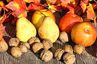 Apples, pears and wal nuts on a rustic wooden table as autumn motif.