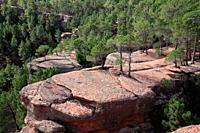Landscape in Los Pinares de Rodeno in the Sierra Albarracín. Teruel.
