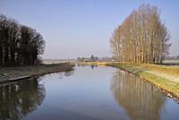Trees along the river Berkel near the Dutch village Lochem.