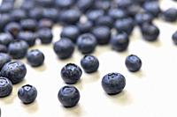 still life with blueberries on a white patterned background.