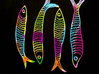 Color handmade drawing of four sardines on black background.