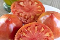 Close up of fresh tomatoes from Valencia Spain.