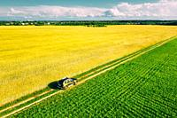 Gomel, Belarus Aerial View Of Renault Duster Car SUV Parked Near Countryside Road In Spring Field Rural Landscape. Car Between Young Wheat And Corn Ma...