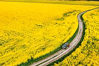 Gomel, Belarus Aerial View Of Renault Duster Car SUV Parked Near Countryside Road In Spring Field Rural Landscape.