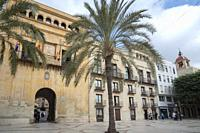 Elche Alicante Spain the old city hall.
