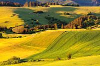 Agricultural, rural landscape in the foothills of Velka Fatra, Slovakia.