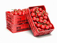 Tomatoes in plastic crates isolated on white. 3d illustration.