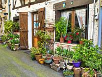 front of house on Rue Saint-Martin with many potted plants, Casseneuil, Lot-et-Garonne Department, Nouvelle-Aquitaine, France.