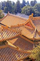 Golden roofs at the Summer Palace in Beijing, China in March 2018.