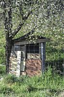 A small poor shed by a fruit tree.