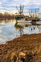 Low tide at the London Road end of Steveston Inlet British Columbia Canada.