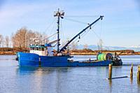 Commercial fishing vessel Sun Maiden returning to Steveston Harbour British Columbia Canada.