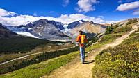 Hiker on Wilcox Ridge above the Columbia Icefields, Jasper National Park, Alberta, Canada.
