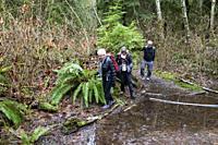 Senior hikers walk in North Vancouver, BC, Canada.