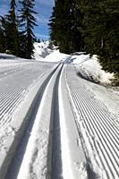 cross country ski tracks at Hollyburn, Cypress Mountain, Cypress Provincial Park, British Columbia, Canada.