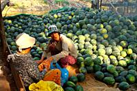 Watermelons, Angkor, Siem Reap town, Siem Reap province, Cambodia, Asia