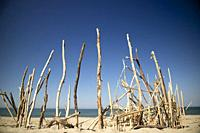 Typical wooden substructures to shelter from the sun on the beach of Viareggio in the summer season.