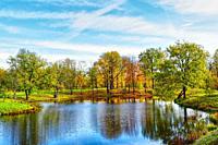 Beautiful Autumn reflection.