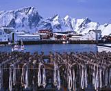 Hamnöy Lofoten Norway Norge.