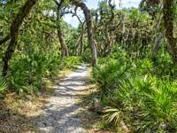 The William S Boylston Nature Trail is a 0. 9 mile lightly trafficked loop trail in Myakka River State Park in Sarasota Florida USA.