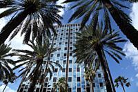 Building in Lincoln Mall and Washington avenue, Miami beach, Florida, USA