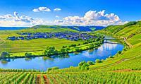 Trittenheim City, Mosselle river.