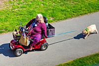 Older woman on an electric scooter taking her dog for a walk in Steveston British Columbia Canada.