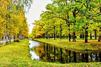 Canal and alley. Tranquil Autumn.