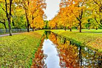 Magic reflection in water. Tranquil autumn landscape with canal.