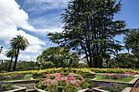 Floral clock, Albert Park. Auckland, North Island, New Zealand.