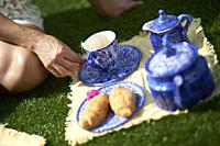 Detail of woman sitting on the grass with cup of tea in the picnic.