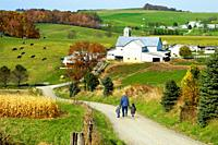 Amish lifestyle in and around Sugarcreek and Millersburg Ohio OH.