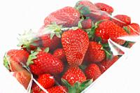 Strawberries in a package, with plastic cover.