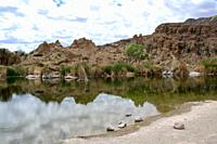 Boyce Thompson Arboretum, Superior, AZ.