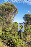 Sign beside thick undergrowth warning of snakes. Photographed on the Great Ocean Road, Victoria, Australia.
