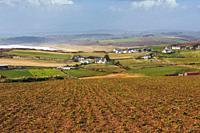 Rural scene near Castlefreke, County Cork, West Cork, Republic of Ireland. Eire.