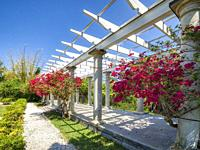 Sunken Garden and Pergola at historic Spanish Point museum and environmental complex in Osprey, Florida. USA.