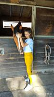 italian jump rider who creates a feeling with his horse for a greater complicity.