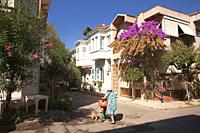 Elderly woman with her dog in front of the traditional wooden houses with balcony in Büyükada, Buyukada-Prinkipos, the largest of the Princes' Islands...