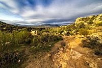 Pathway, rocks, bushes and cistus in Sierra Cabrera, early in the morning. Madrid. Spain. Europe.
