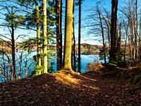 Patch of morning sunlight quiet scenery Lokve lake coastline in Croatia