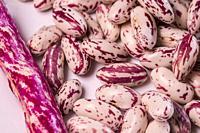 Pinto beans in a closeup.