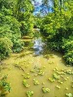 Dropt River at Moulin Neuf, near Eymet, Dordogne Department, Nouvelle Aquitaine, France.