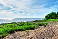 Scenic sea shore. Tranquil summer landscape with clear blue sky.